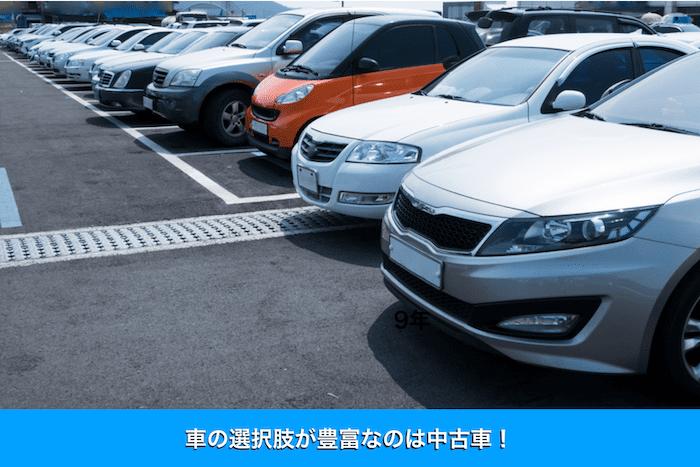 車の選択肢