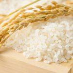 ふるさと納税の返礼品お米おすすめ人気ランキング!