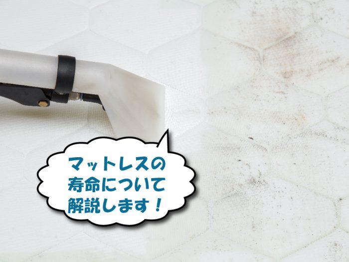 カビの生えたマットレスを掃除