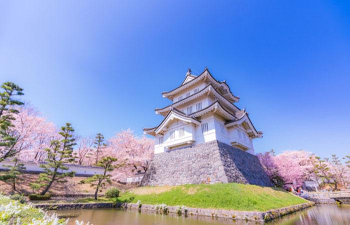 埼玉県から利用できる古銭買取業者17社を徹底比較!TOP5の買取業者は?